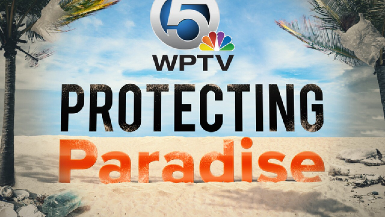 WPTV launches Protecting Paradise, a yearlong focus on environmental issues in South Florida