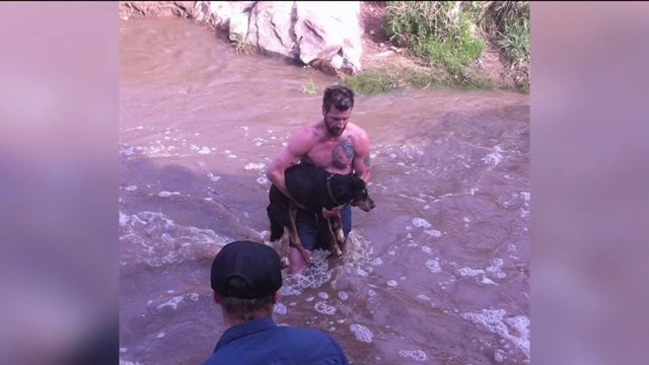 Vail yogi going viral after saving woman's pup from raging Utah waters