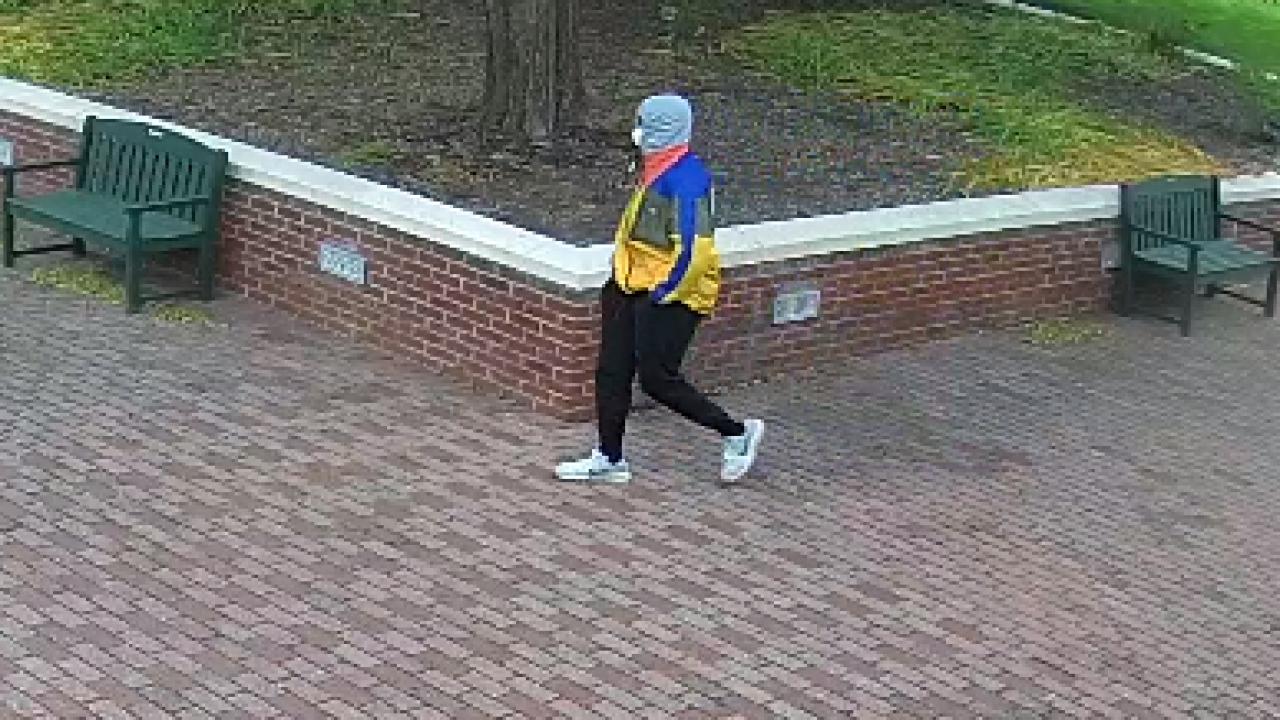 York County Tabb vandalism suspect (May 2020) 3.png