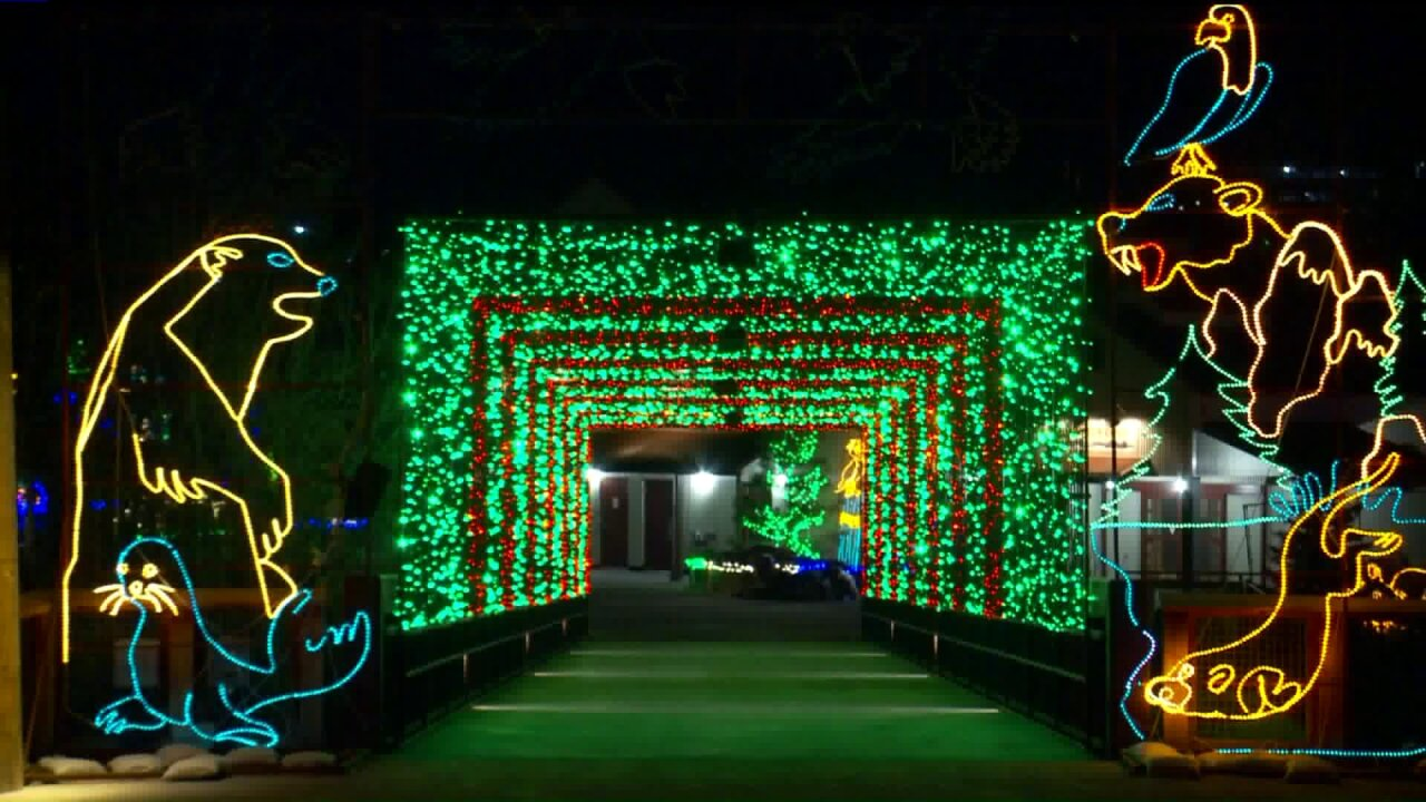 Now's the time to see 'ZooLights!' at Utah's Hogle Zoo before it's toolate