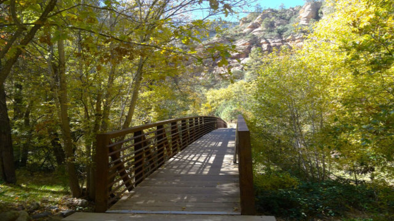 WANDERLUST! Best hikes to see fall colors in AZ