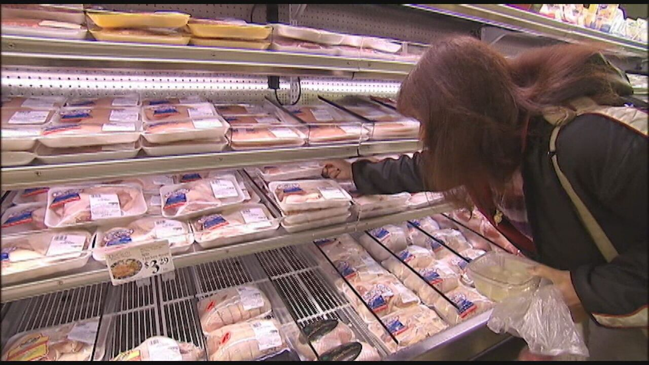 2006_How_to_Eat_During_a_Meat_Shortage.mpg_frame_447.jpeg