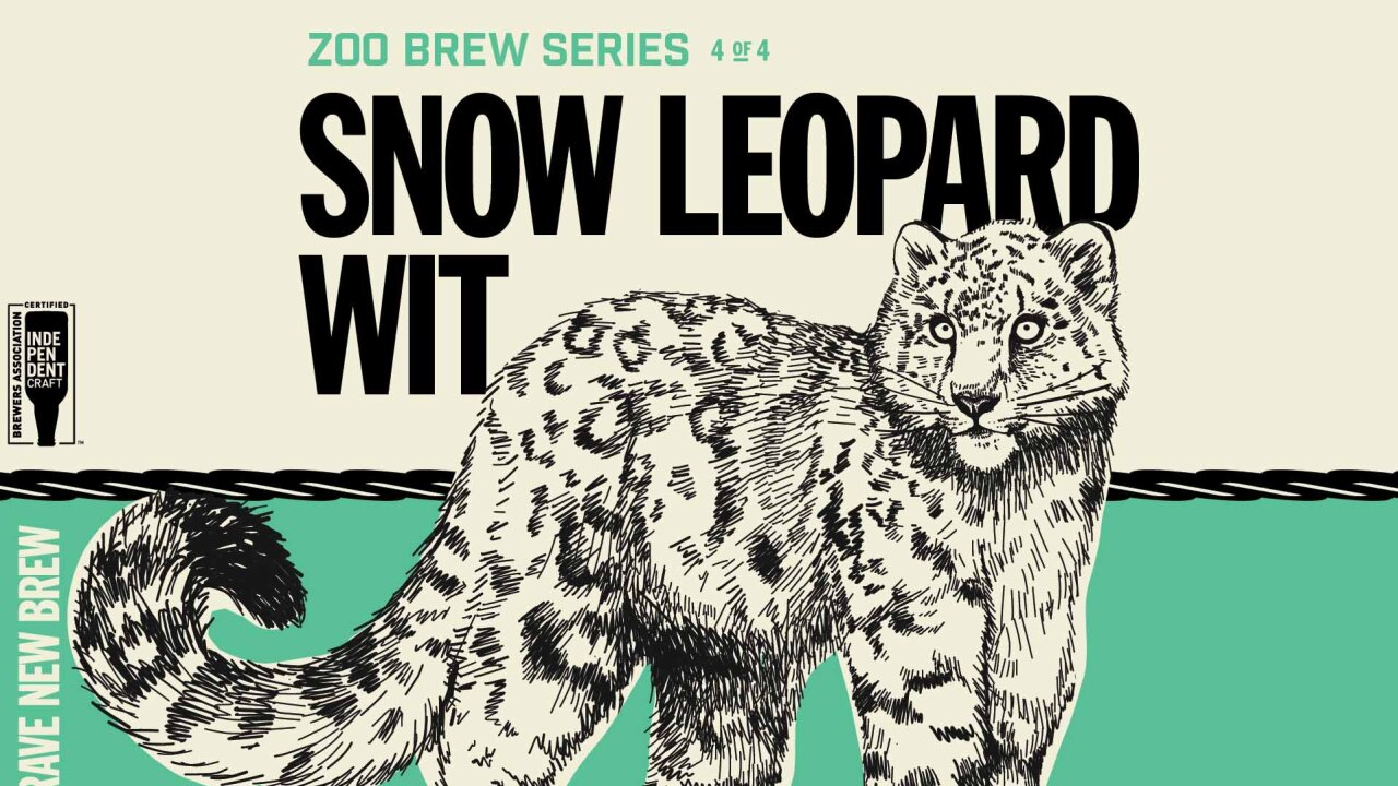 Snow leopard wit