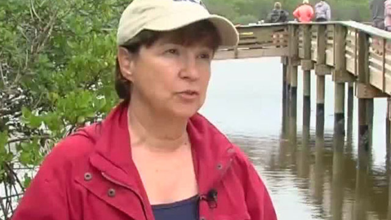 Local scientists fears toxic algae blooms could thrive in current water conditions