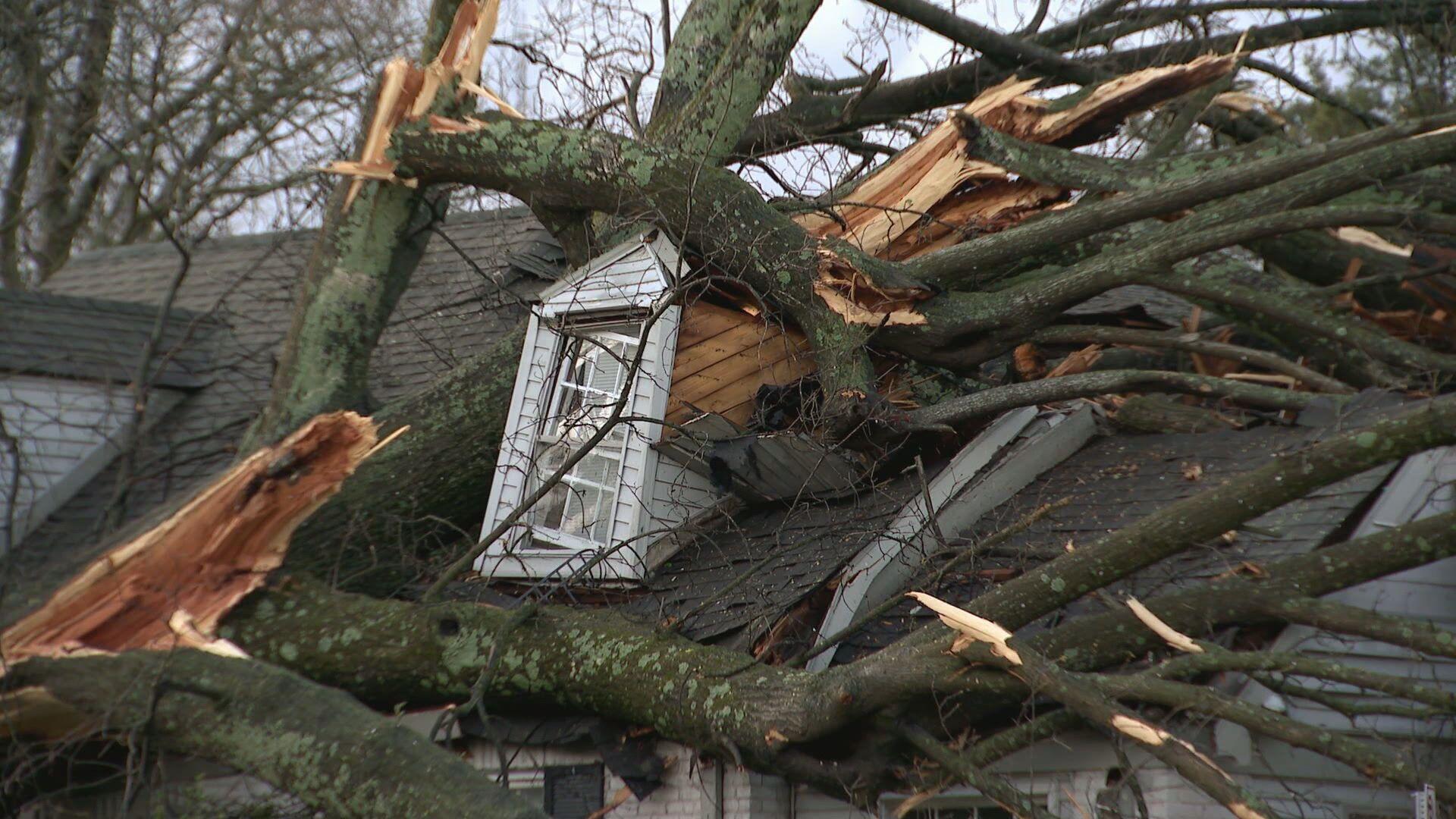 AM Cole- Melrose Storm Damage.transfer_frame_190.jpeg
