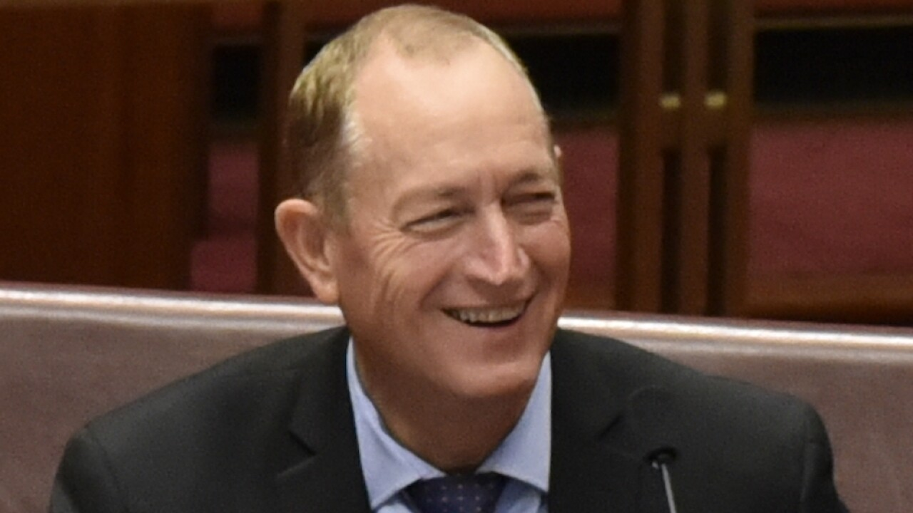 Hours after New Zealand mosque shooting, Australian senator blames Muslims for terror attack
