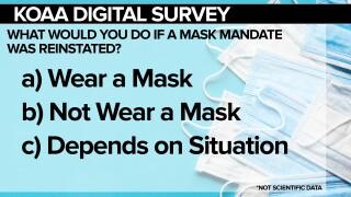 SURVEY Masks FSG.jpg