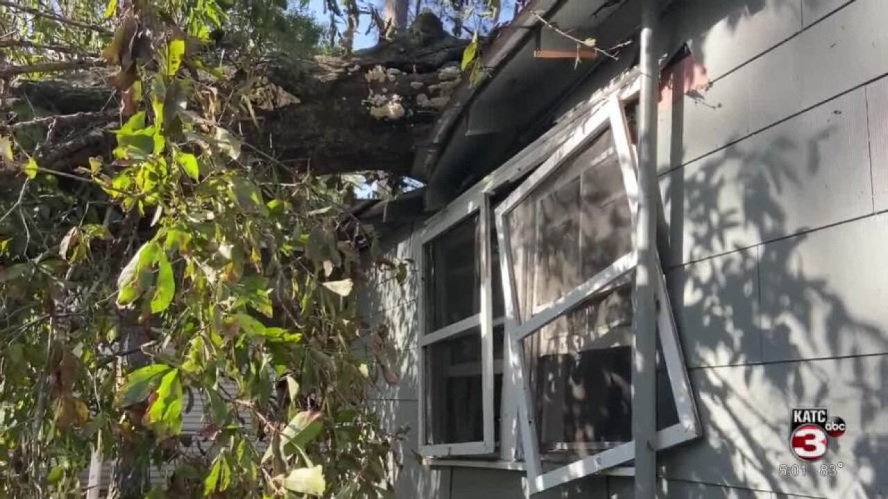 Opelousas home destroyed by tree.jpg