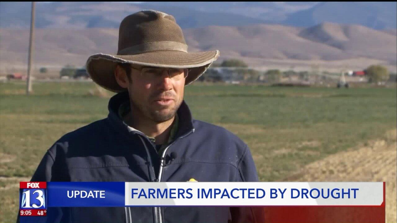 Farmers speak after Herbert declares droughtemergency