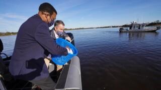 Northam oyster restoration announcement (November 19) 3.jpg