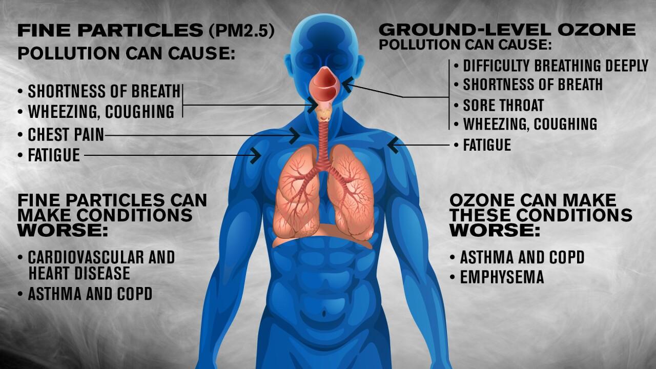 Ozone body effect.jpg