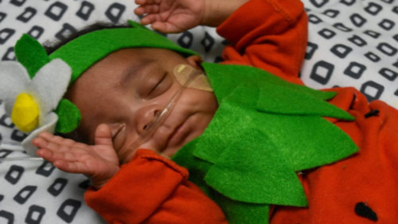 NICU Staff Dressed Preemies In Halloween Costumes And They Are Adorable