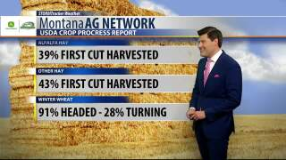 Montana Ag Network Weather: July 9th