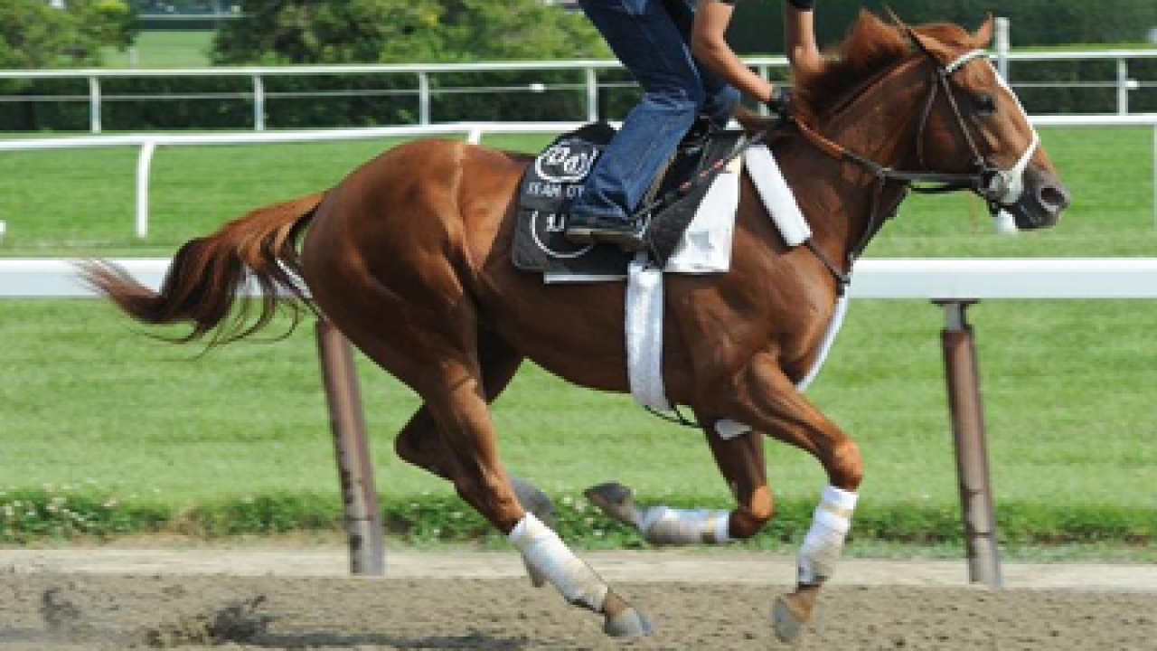 Union Rags wins 144th running of Belmont Stakes