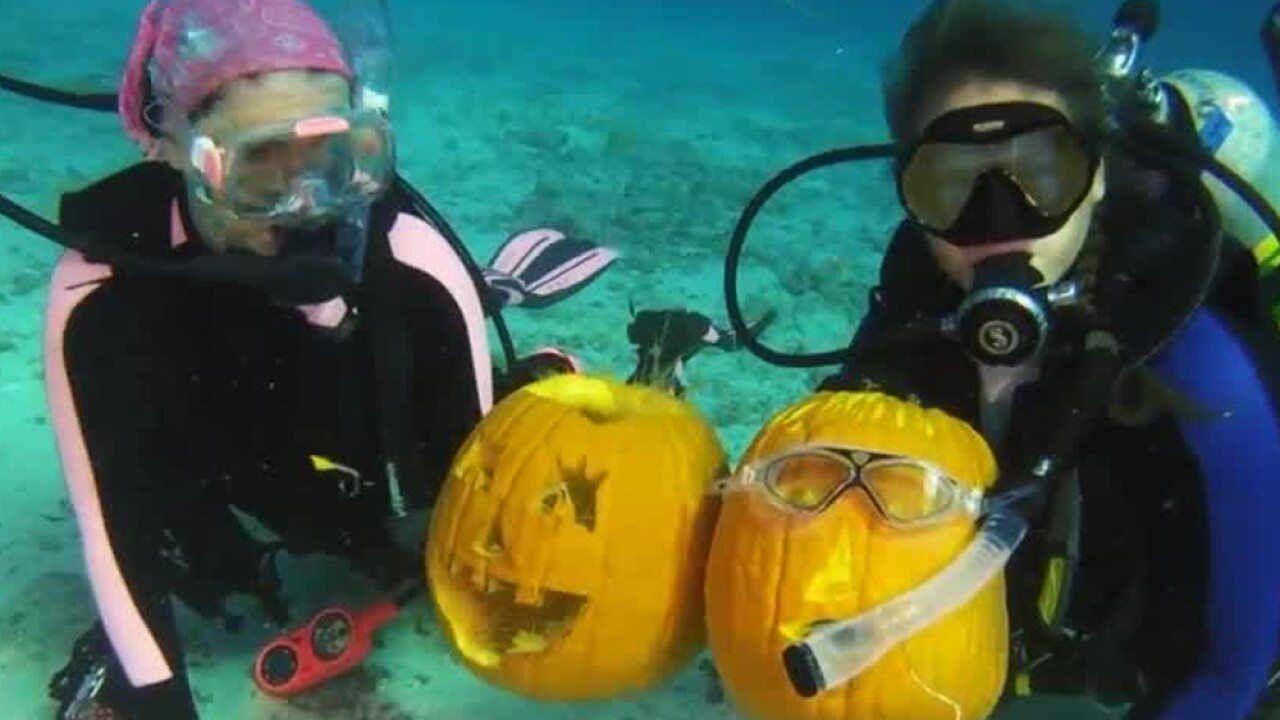 wptv-underwater-pumpkin-carving-contest.jpg