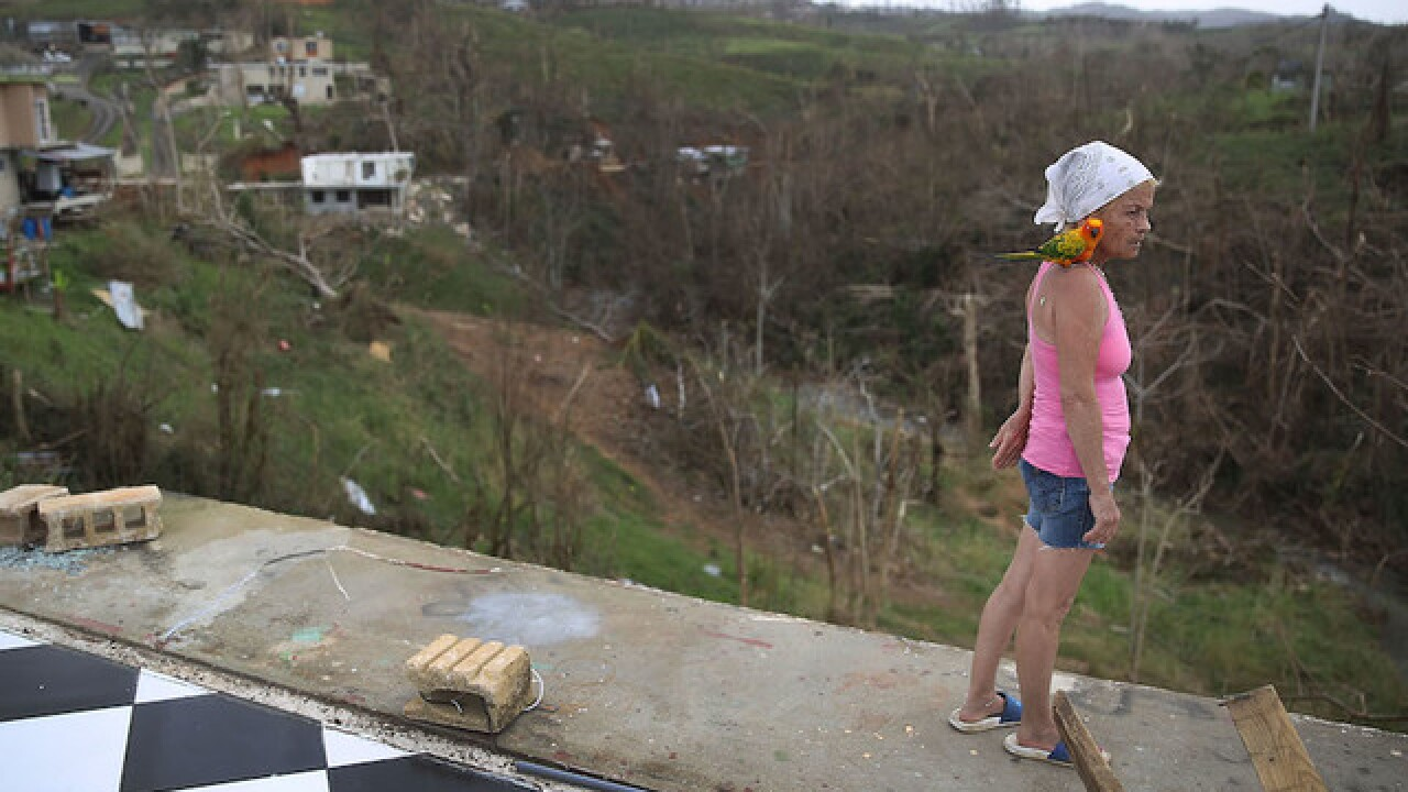 Trump authorizes waiver to loosen shipping regulations for Puerto Rico