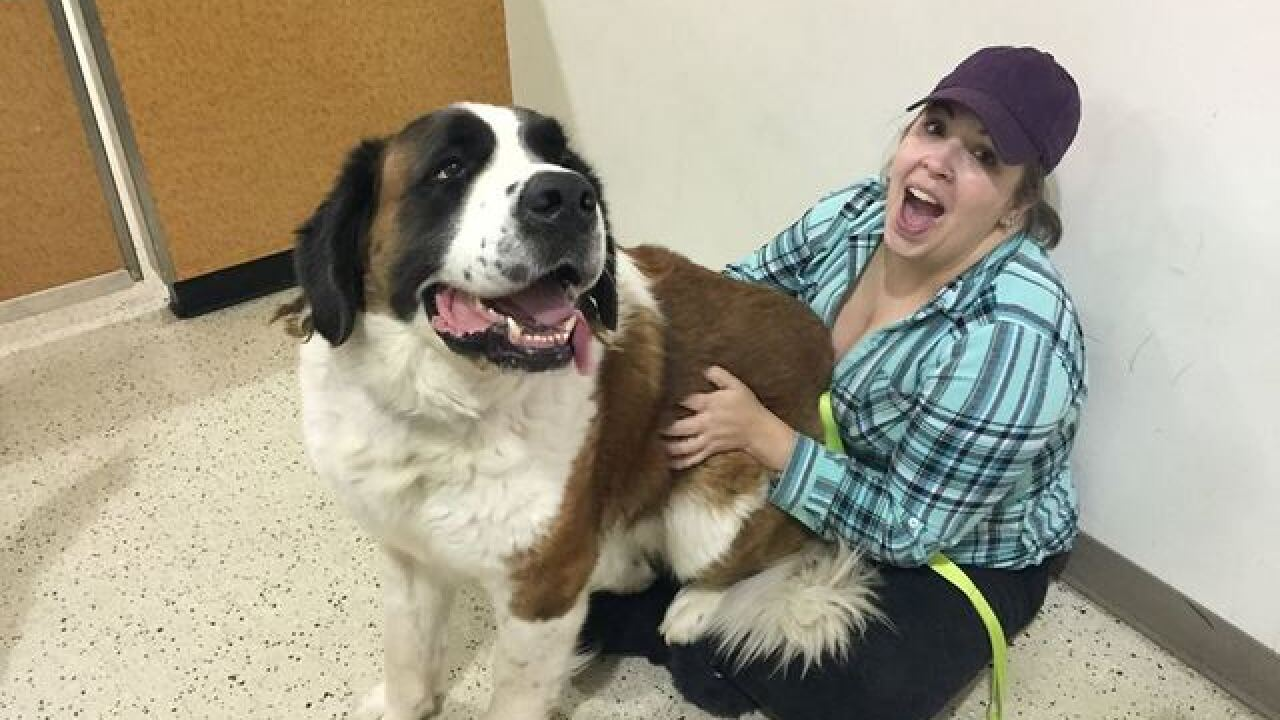 Texas woman reunites with dog after 2 years