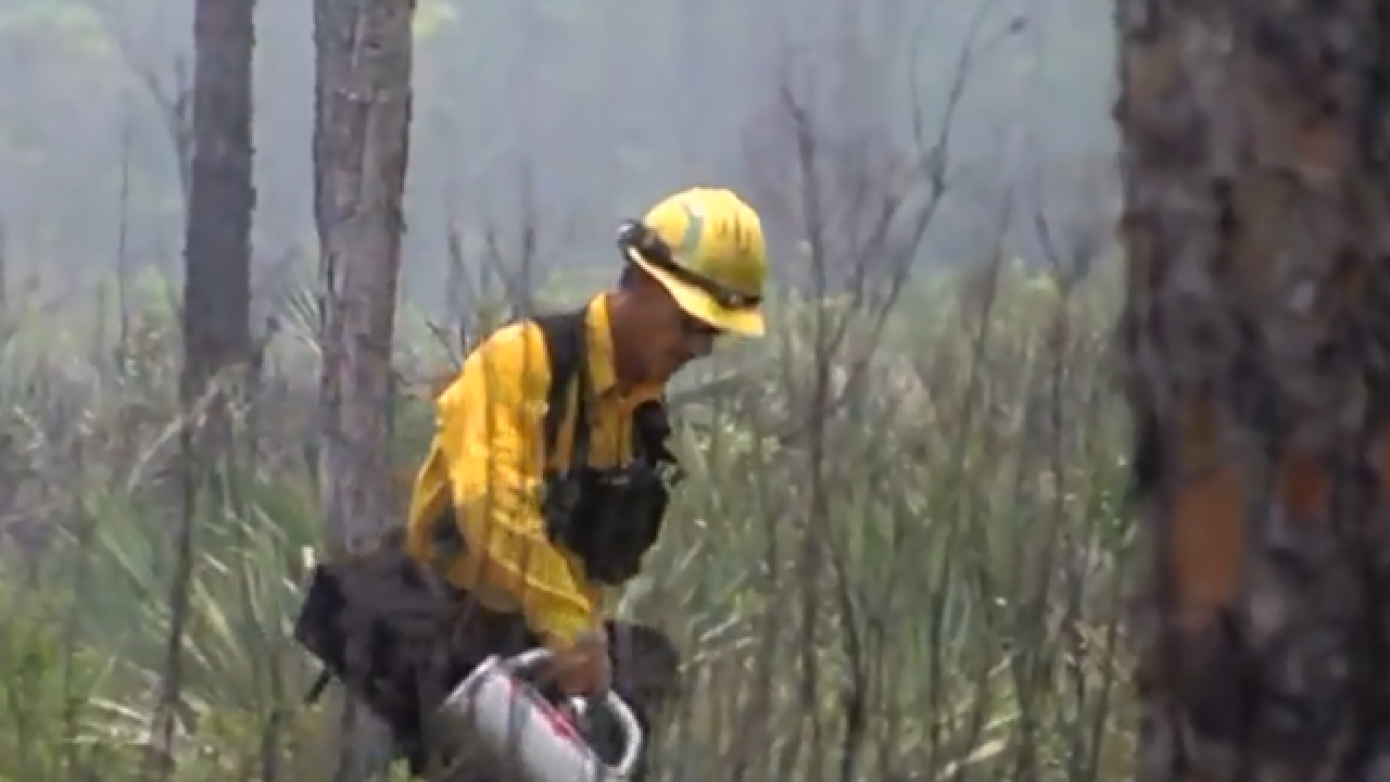The science behind prescribed burns