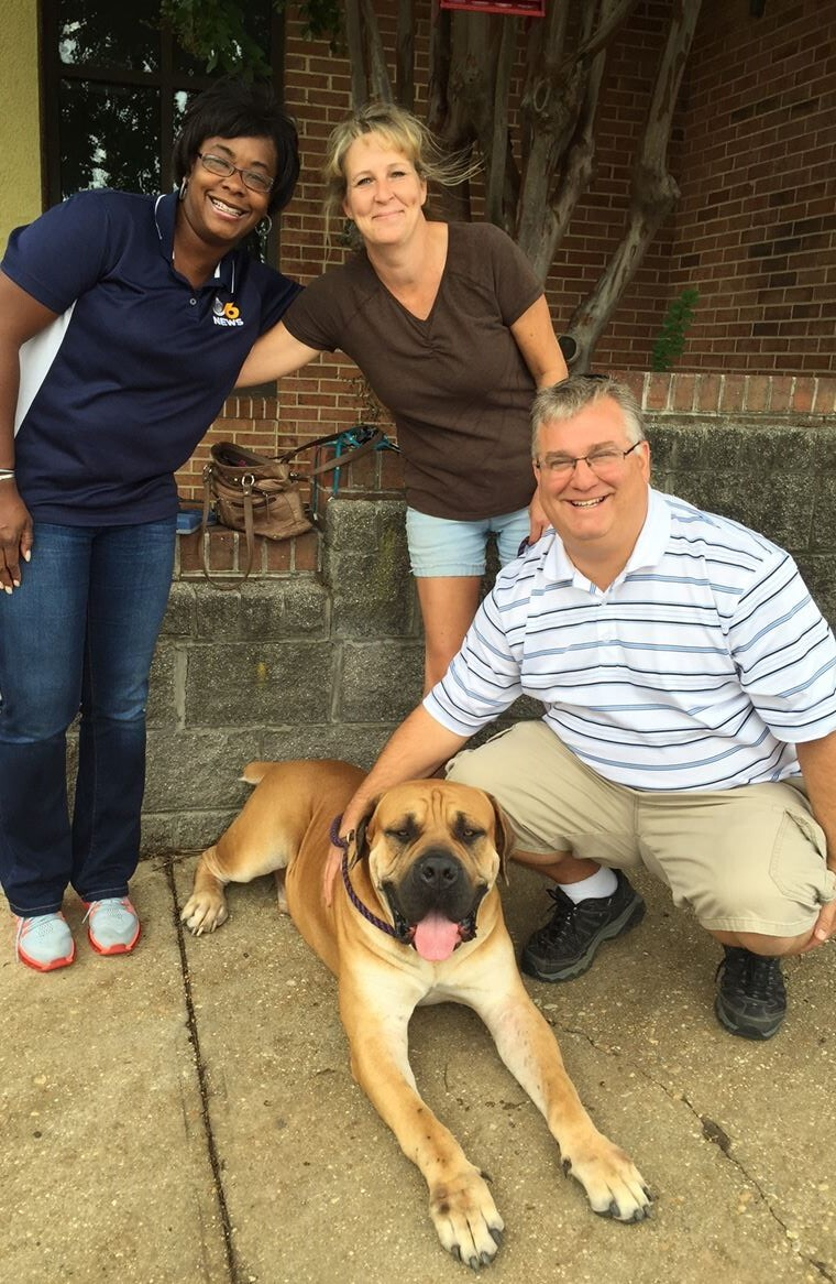 Photos: 175-pound South African Mastiff stolen from backyard found safe, returned to worried owner