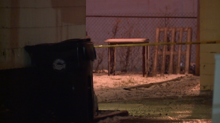 Man was 'popping off' rounds to ring in new year when he shot, killed girlfriend, police say