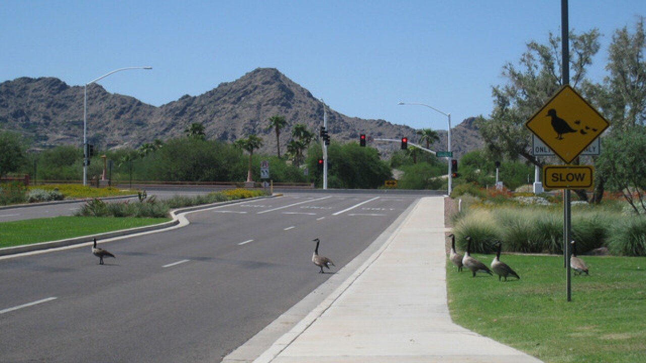 Your city on the list? 10 safest cities in AZ