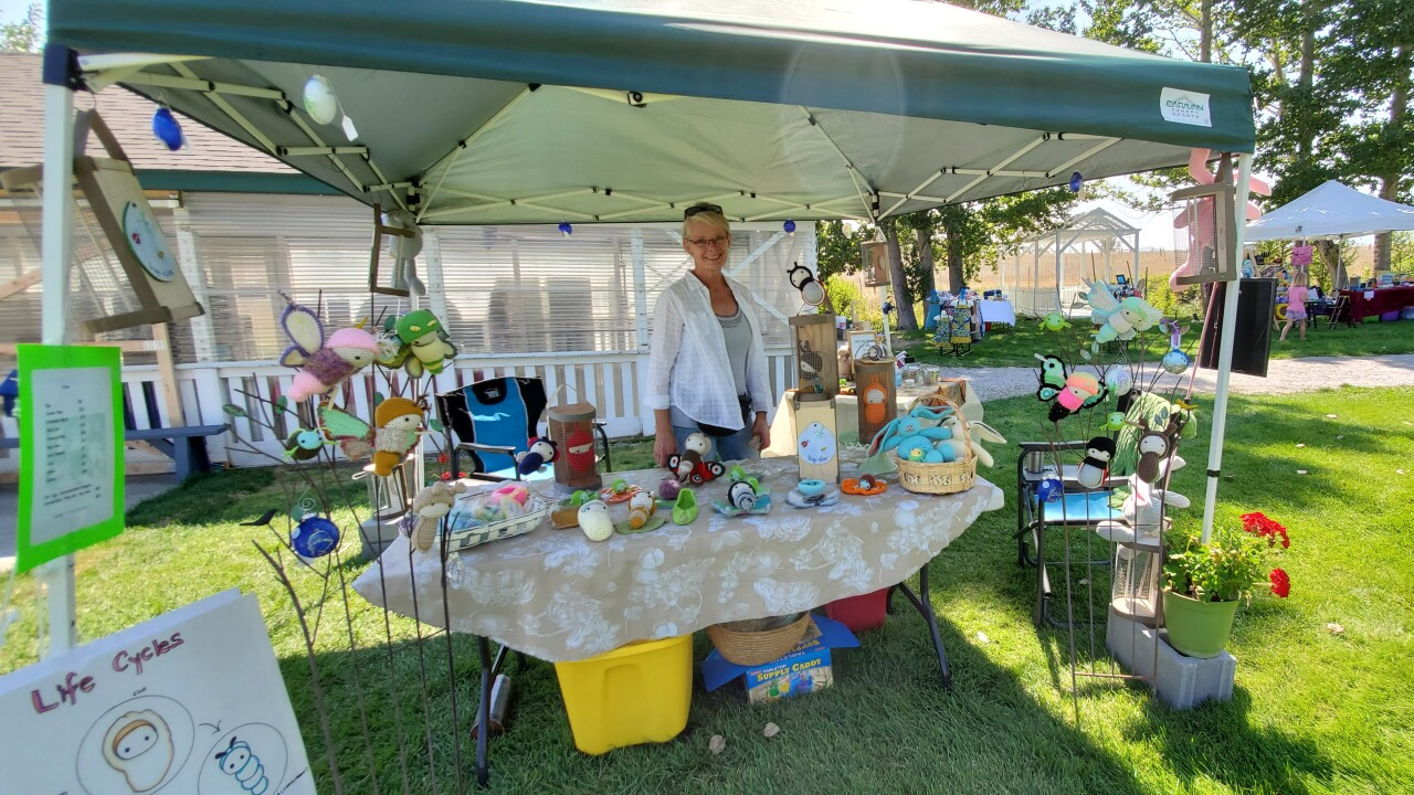 Townsend Craft Fair (12)