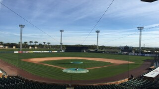 PHOTOS: Tigers begin Spring Training in Lakeland