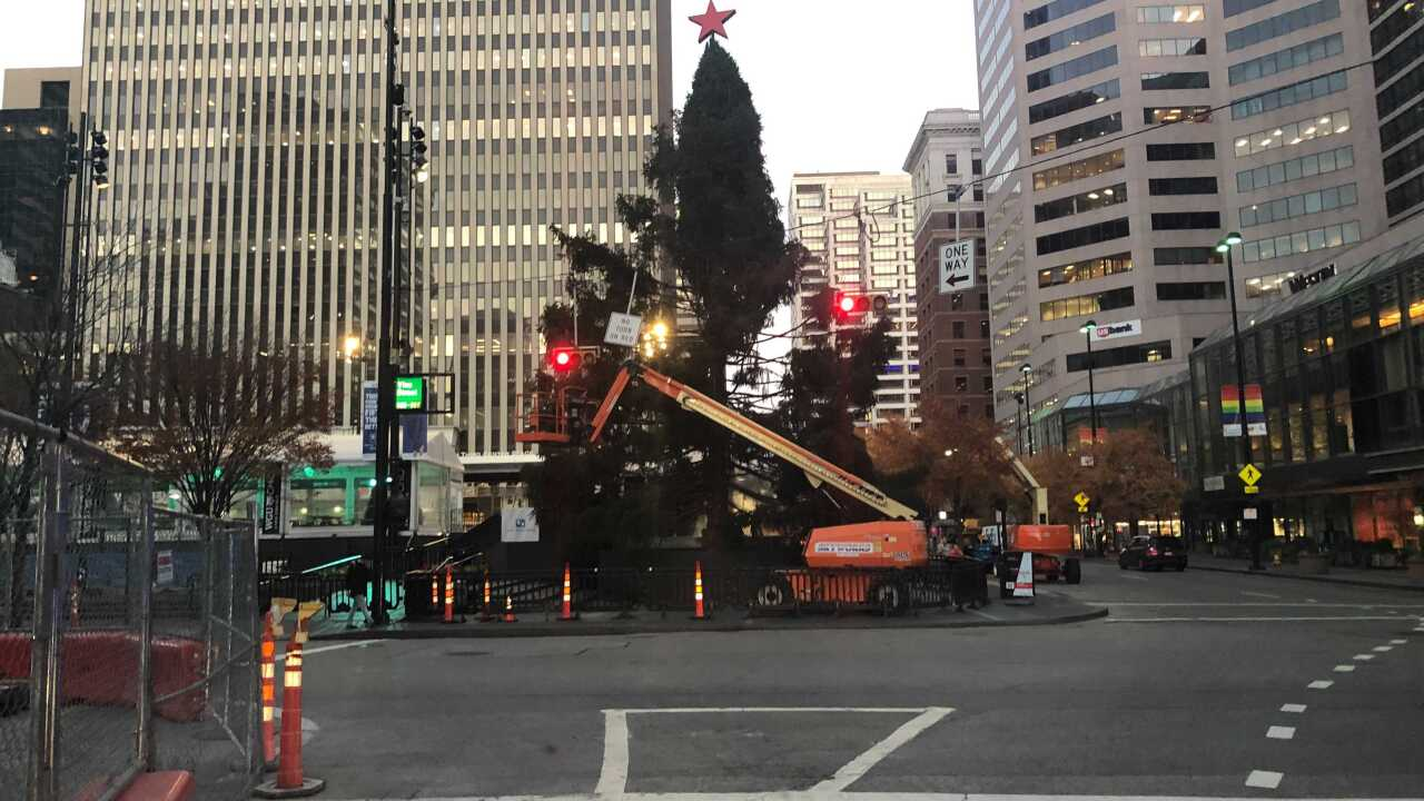 Is There Goingvto Be A Christmas Tree 2020 Relax, Cincinnati. The Macy's Holiday Tree on Fountain Square isn