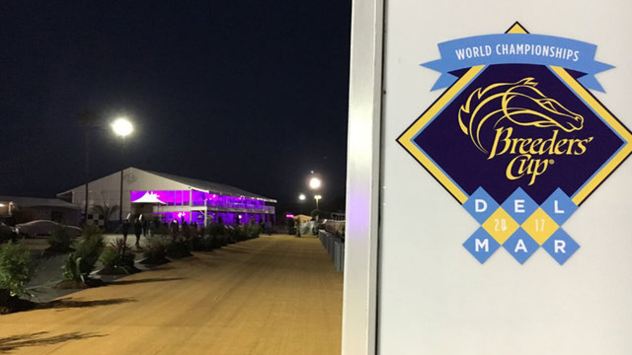 Breeders' Cup in Del Mar gave nearly $100M boost to San Diego economy, report says