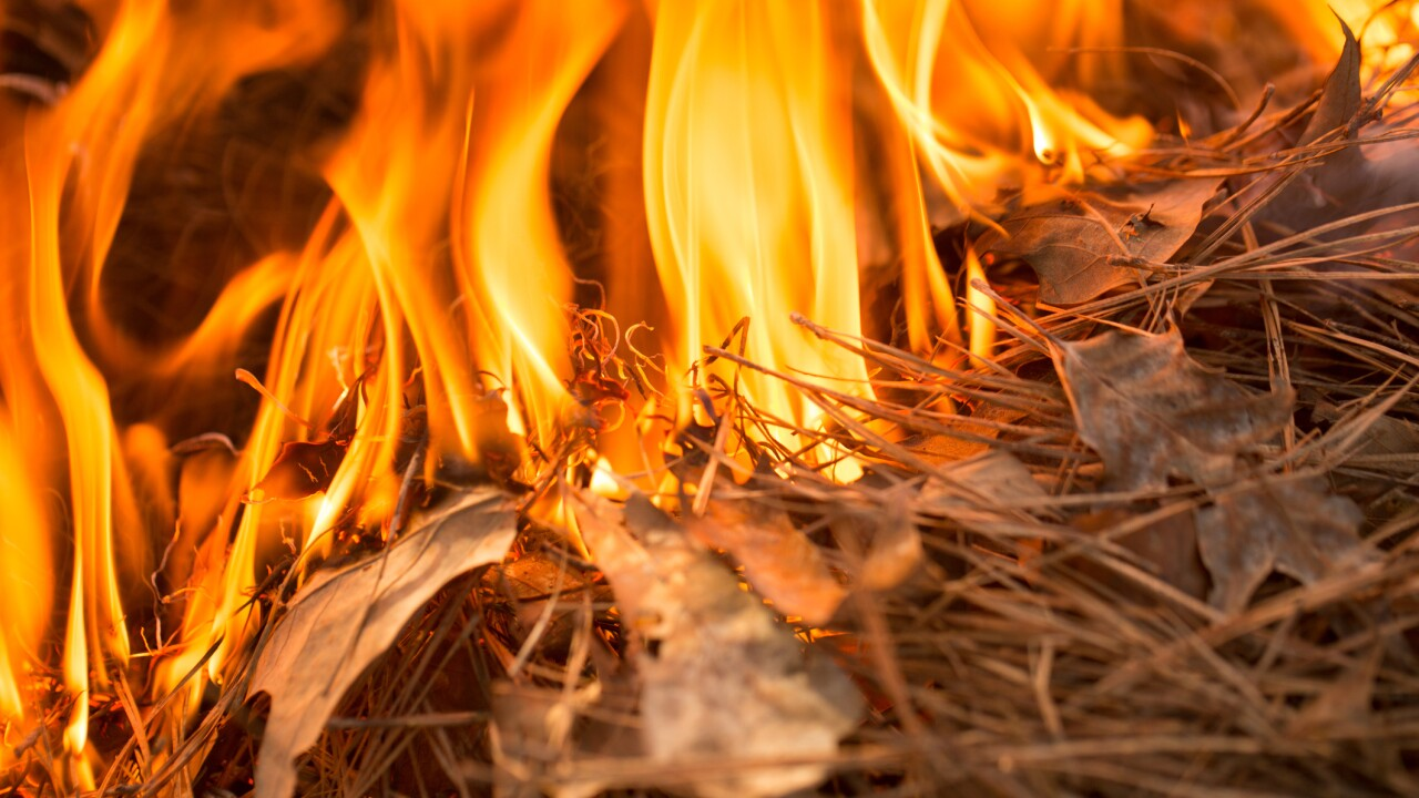 Burn ban lifted for Dare Co., 17 other eastern North Carolina counties