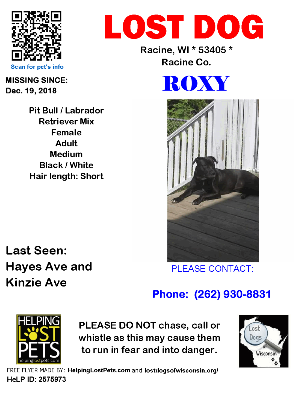 121918 Roxy Pit Lab Adult.png