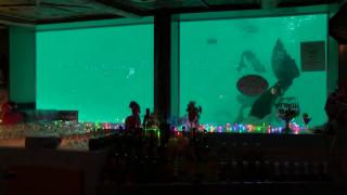 Sip 'N Dip Lounge at the O'Haire Motor Inn