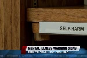 The Quiet Epidemic - Mental Illness in Arizona