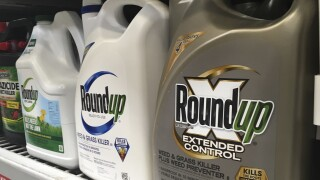 Bayer to pay up to $10.9 billion to settle Monsanto case