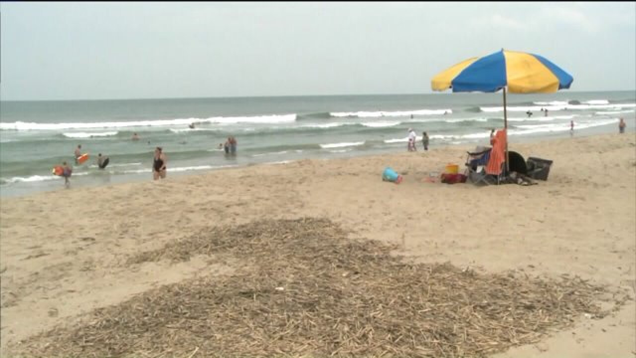 Despite recent shark attacks, lifeguards are not urging swimmers to stay out of thewater