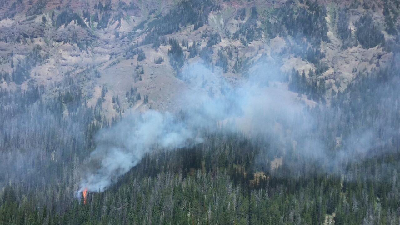Pollux Fire in Yellowstone National Park