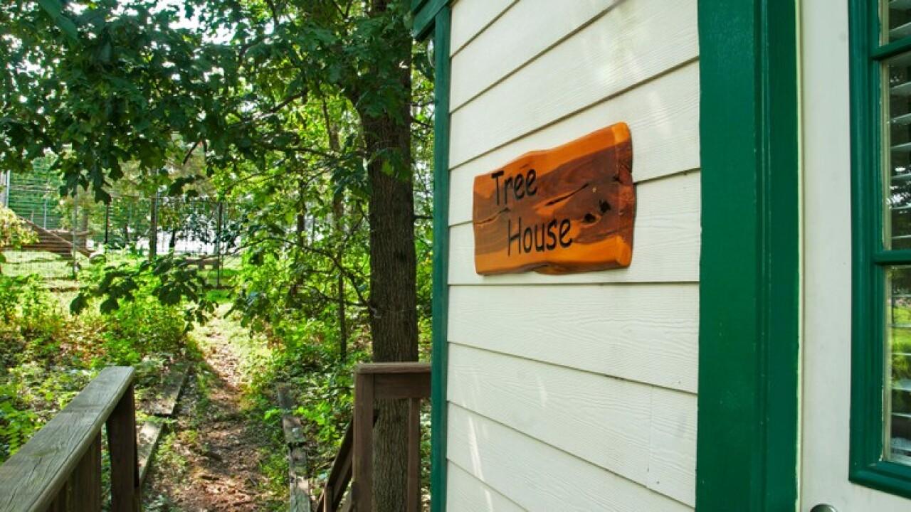 Tree House at Turpentine Creek Wildlife Refuge