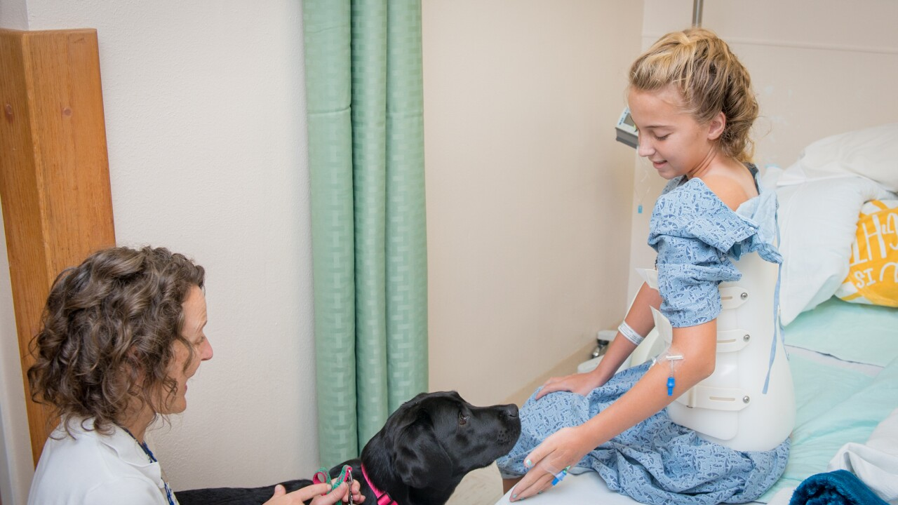 Tallahassee Memorial Healthcare Animal Therapy Program