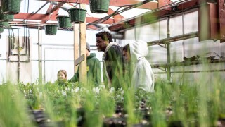 MKE students take part in Teens Grow Greens internship