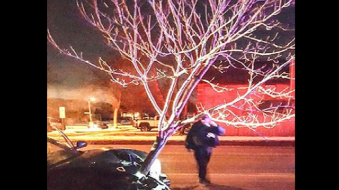 Woman drives around with tree lodged in car