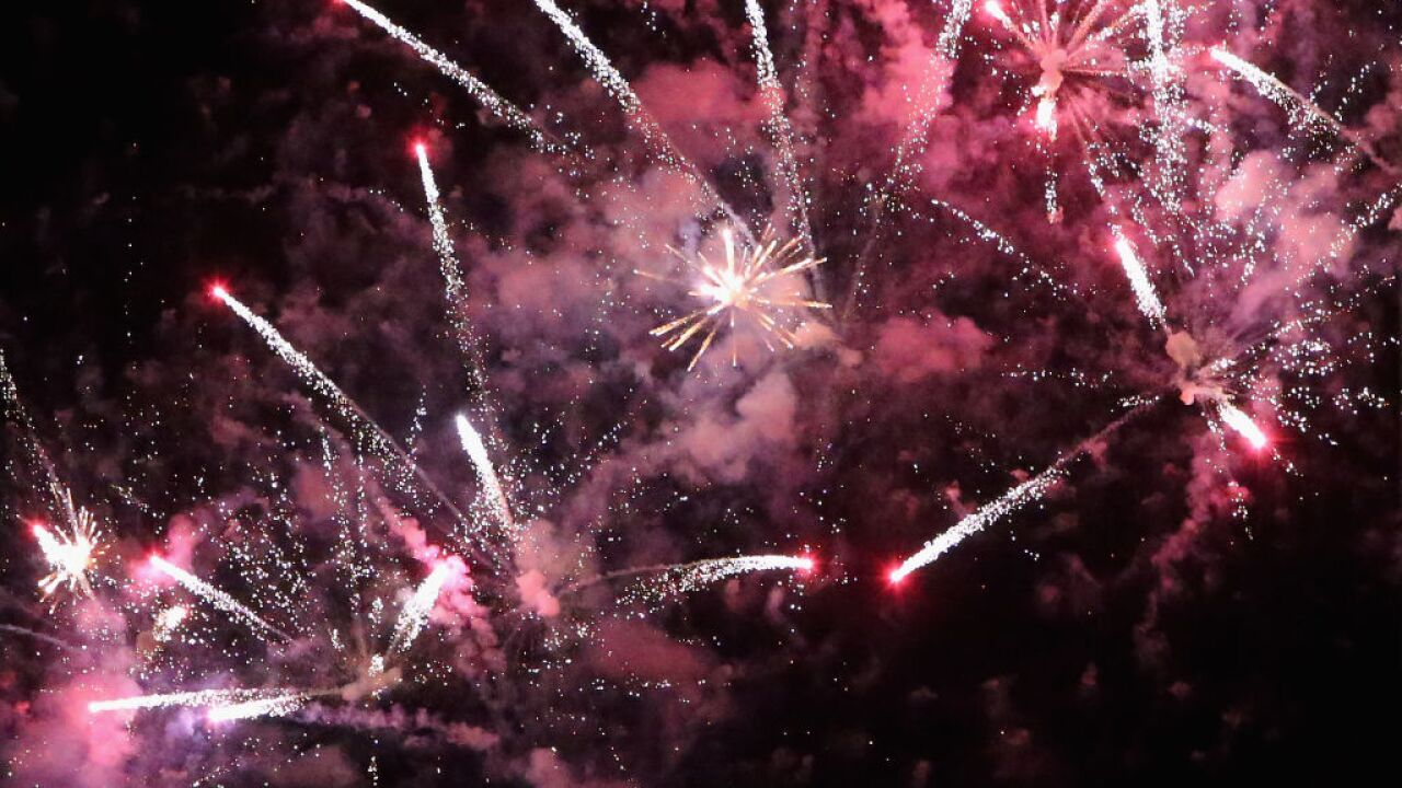 New Year's Eve fireworks can be stressful for pets. Here's how you can keep them safe