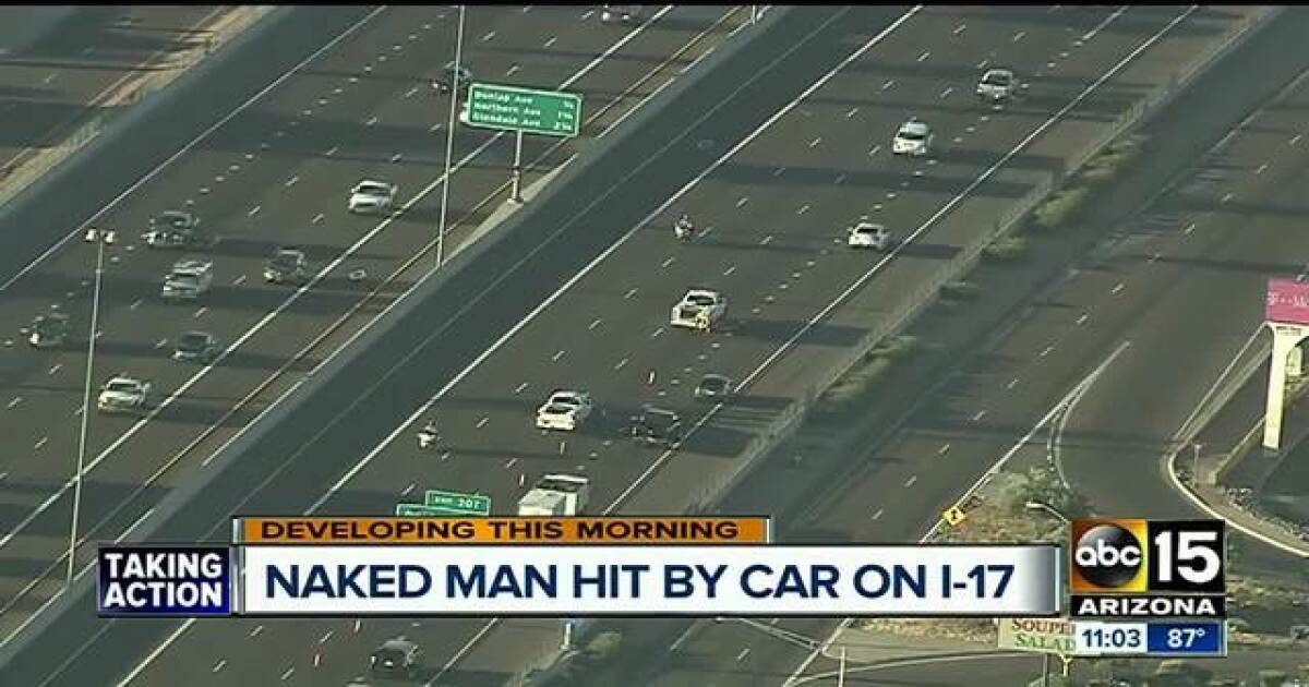 Pedestrian dies after being hit by car on I-17