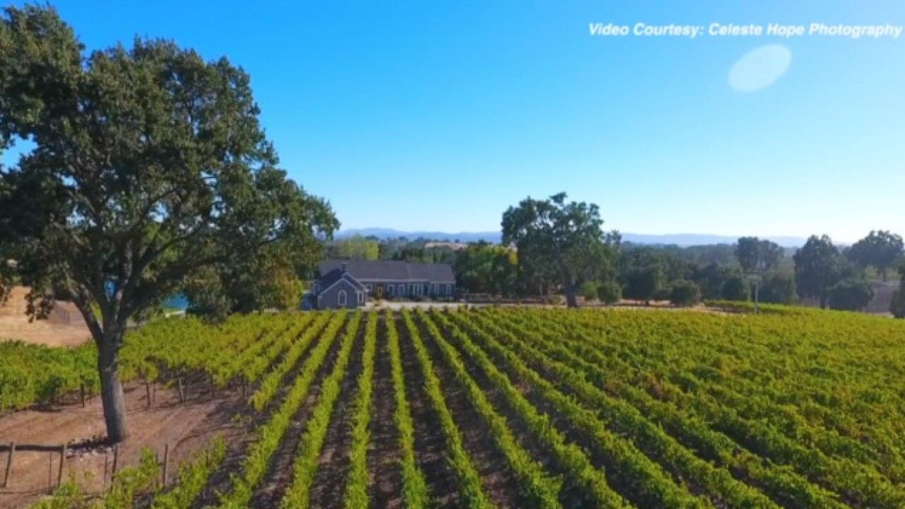 Bakersfield native with highest Cabernet in Paso