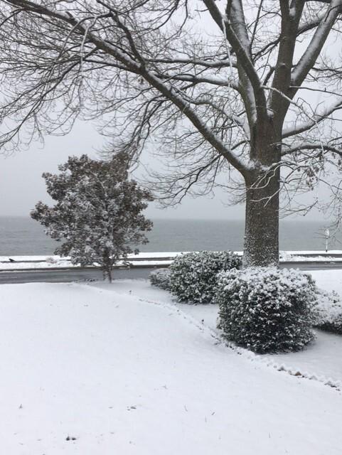 Snow Day in Hampton.jpg
