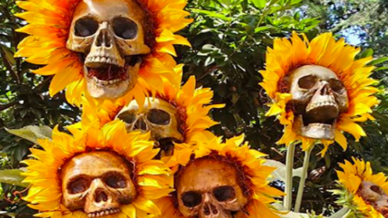 These DIY Sunflower Skulls Are The Ultimate Halloween Decoration
