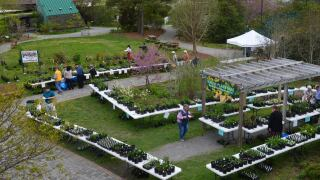 VLM Native Plant Sale aerial.jpeg