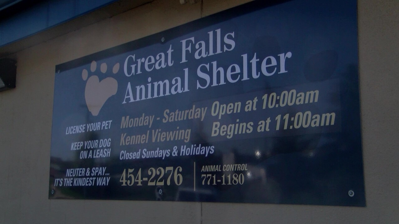 Great Falls Animal Shelter breaks ground for cattery