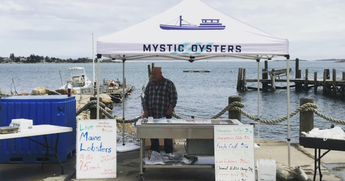 Like many small businesses, family oyster company forced ...
