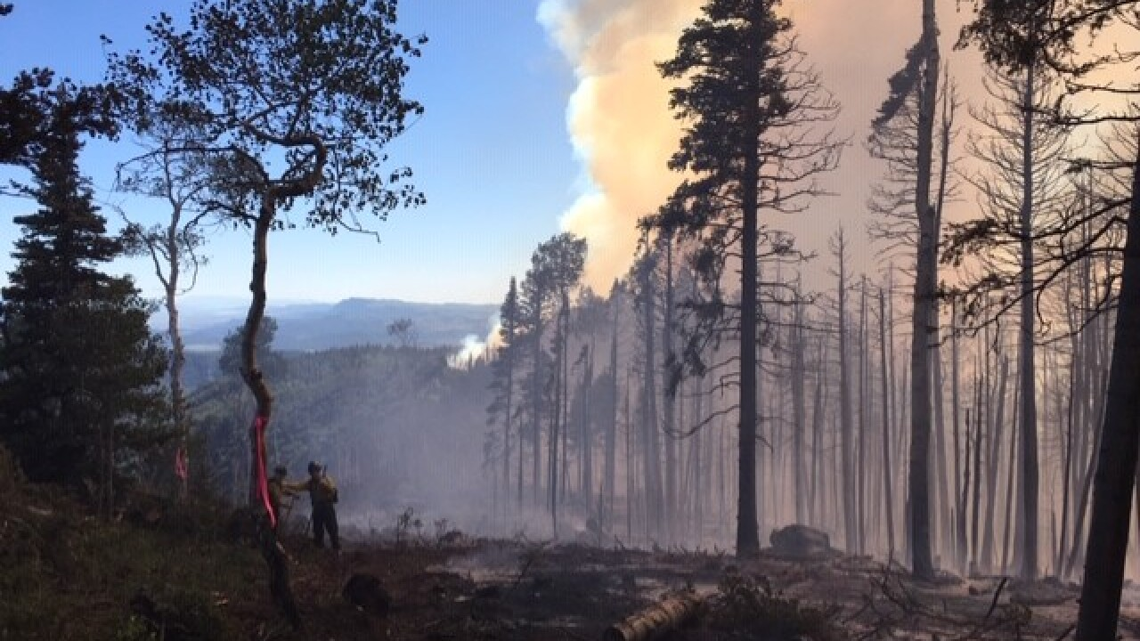Skull Flat Fire 50% contained