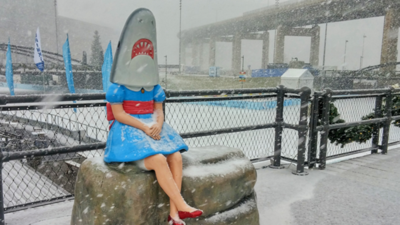 Shark Girl to be temporarily out of view, undergo conservation work next week
